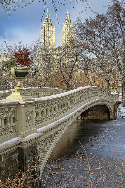 Bow Bridge, Central Park. New York City I've been, but would love to go again!!