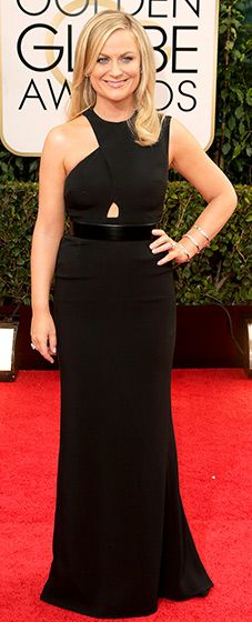Amy Poehler: 2014 Golden Globes