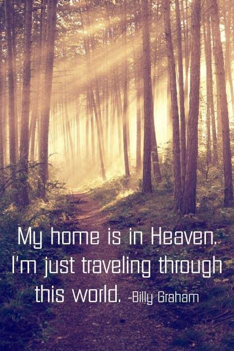 This is my temporary home, it's not where I belong...
