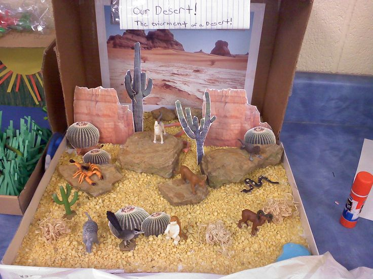 "Desert Diorama using Toob ""Desert"" animals"