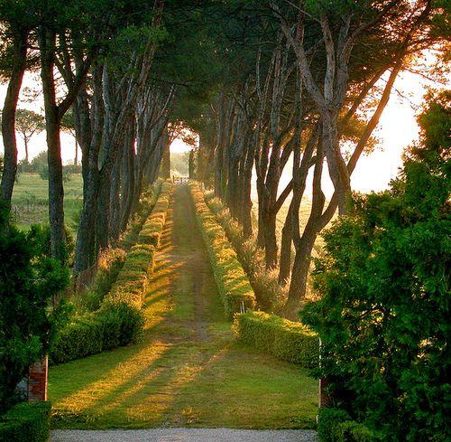 Vicino a Perugia, Umbria, Italia