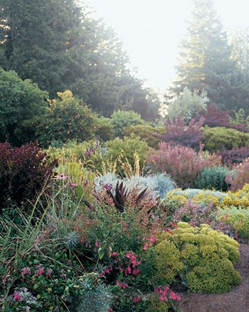 The beauty of contrasting contrasting foliage, via Martha Stewart