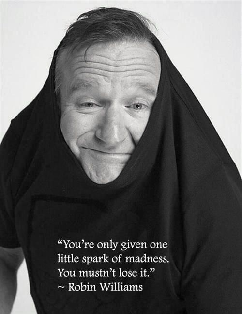 Robin Williams madness quote