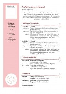 curriculum vitae modelo3b granate faces pinterest