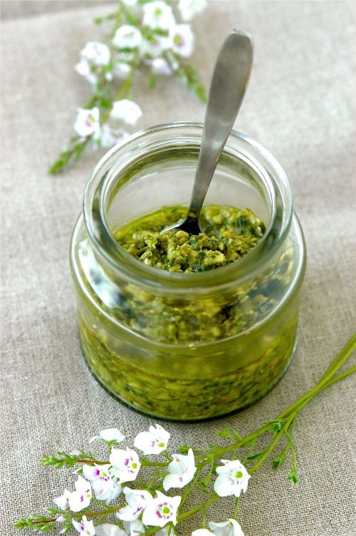 "walnut-pesto recipe from ""Kiss My Spatula"" and other fresh bail ideas"