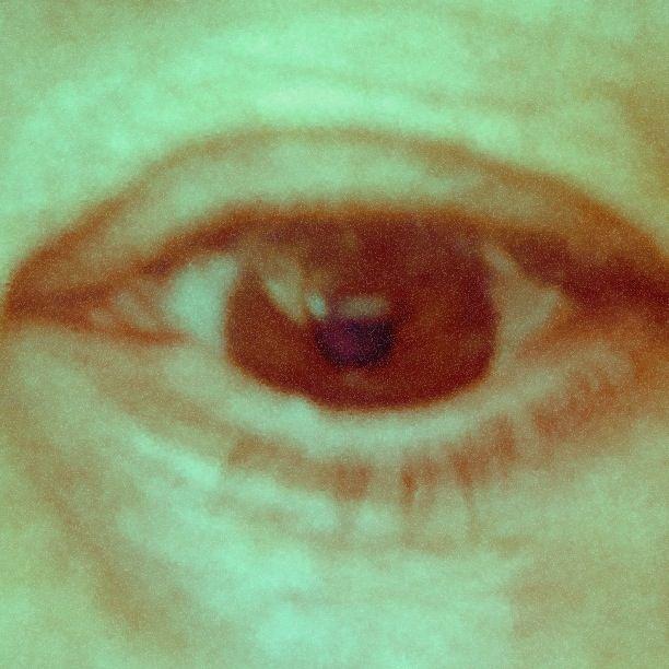 my fall eye color analysis soft autumn pinterest