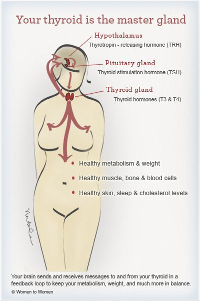 Your thyroid is the master gland www.thyroidchange.org