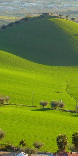 Incredibile Snaps: Verde Pascolo italiano