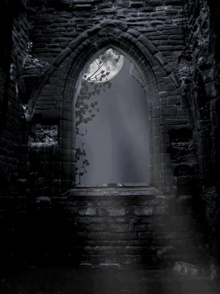 moonlight through a window 的圖片結果