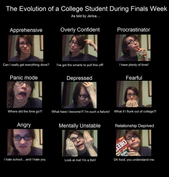 The evolution of a college student during finals week. #funny #meme #collegehumor #backtoschool #finalsweek