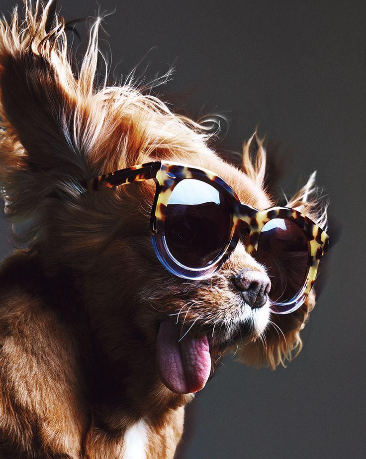 "<br/>Karen Walker Eyewear<br/><span style=""font-family: adobe-garamond-pro, adobe-garamond-pro,"