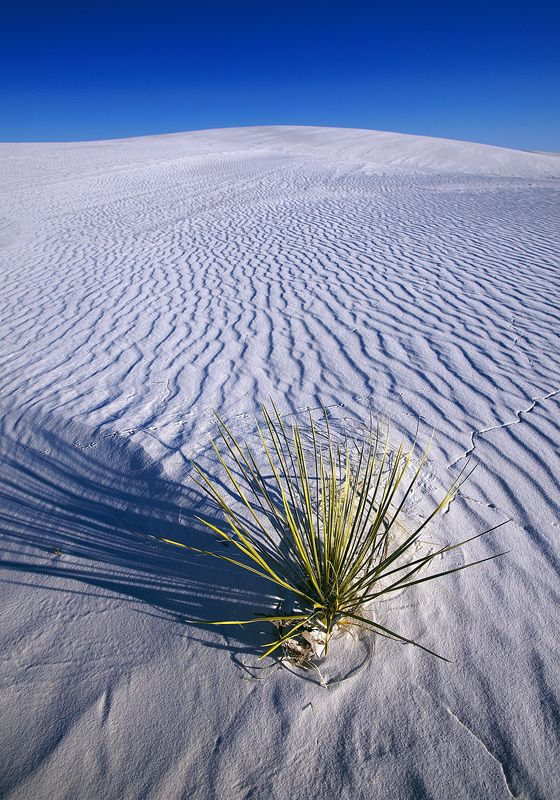 White Sands by Vadim Balakin, via 500px