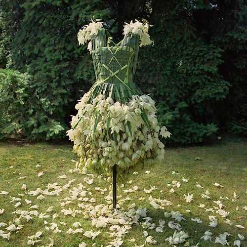 The Weedrobes Wardrobe complements the series of wearables as a collection of fictional outfits for today's eco-warrior. Like paper cut-out dresses, these garments made from leaves, flowers and edibles, represent a yearning for a fashion industry built on sustainable materials and practices. -nicoledextras.com