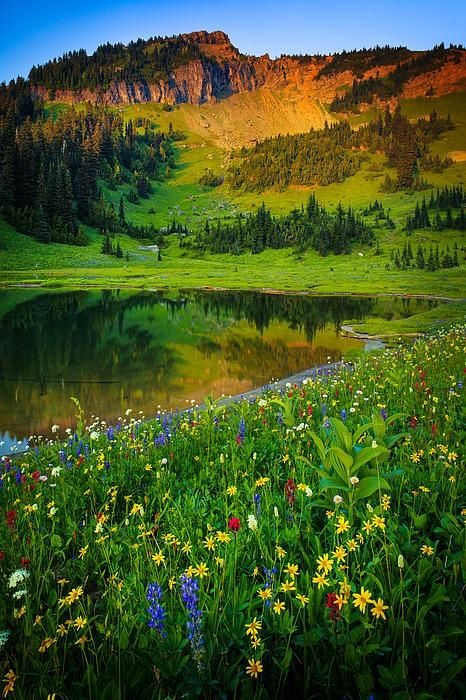 Mount Rainier Lake - Washington State USA