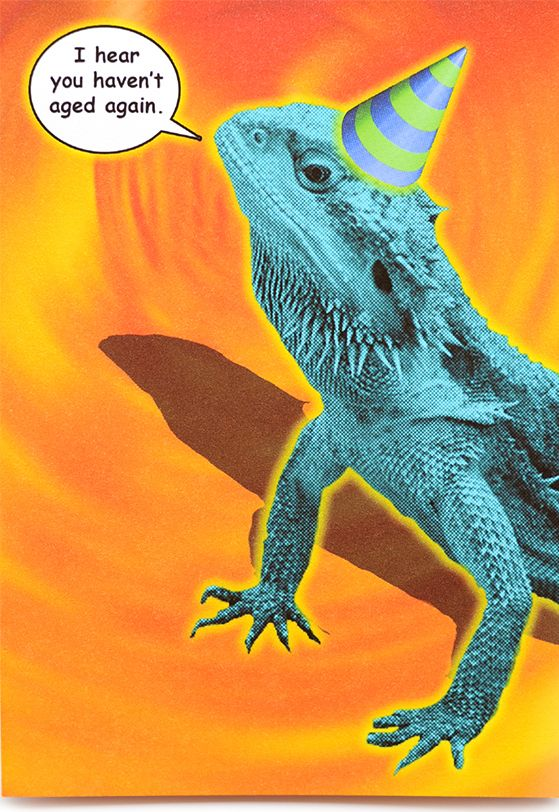 funny lizard birthday card is crafted in popliments copyrighted