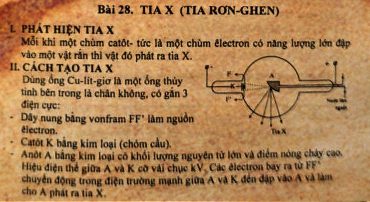 VL12C5B28-Tia-Ronghen_01
