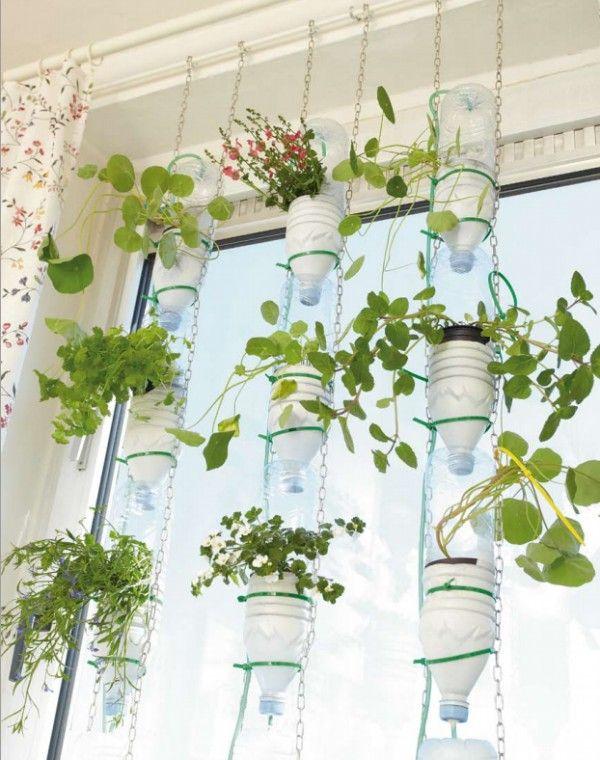agriculture sur fenêtre