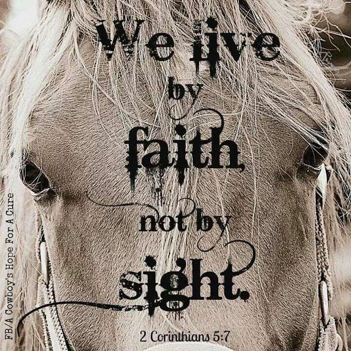 Image result for inspirational bible verses with horses