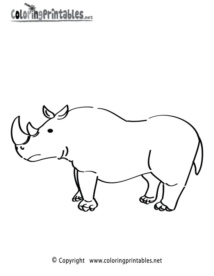 rhinoceros coloring page printable animal themed worksheets pint