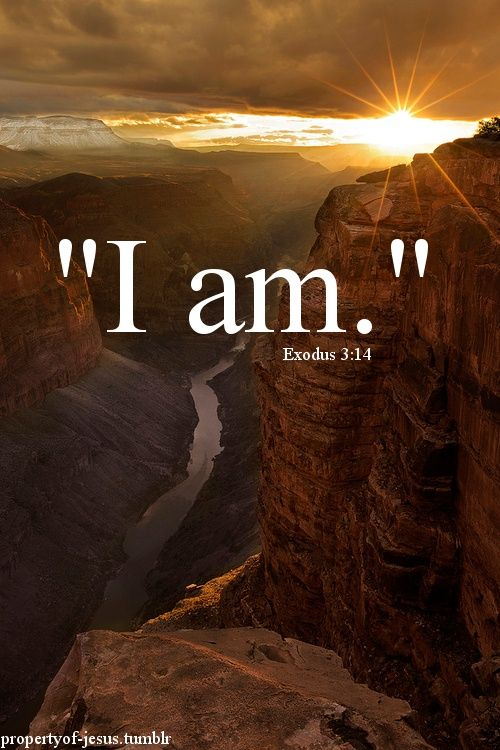 """""""I am.""""  The most powerful words in the English language.  Be careful of the words you choose to follow """"I am"""".  Exodus 3:14  God said to Moses, """"I am who I am."""""""