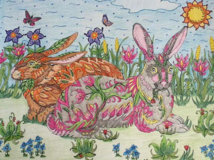 rabbits me your way pinterest