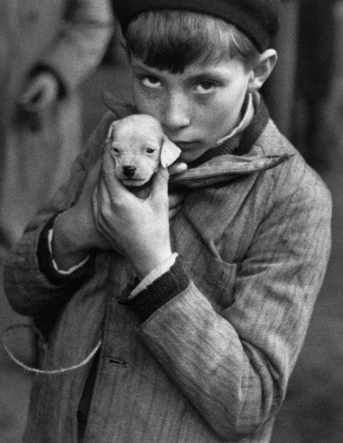 André Kertész, Boy Holding Puppy, 1928