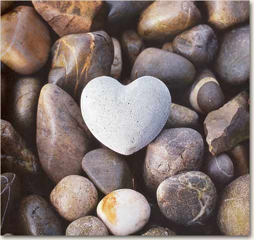Hearts in nature - The blog has several unique natural heart pictures.