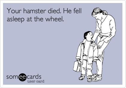 Your hamster died. He fell asleep at the wheel.