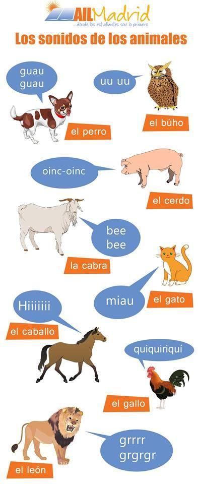 ¿Te has preguntado alguna vez que sonidos hacen los animales en #español? #spanish