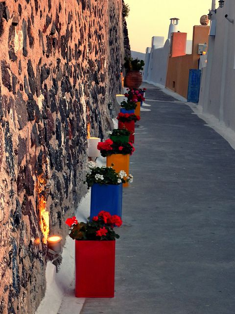Narrow lane with a row of multicolored pots of flowers Fira Santorini island Cyclades #kitsakis