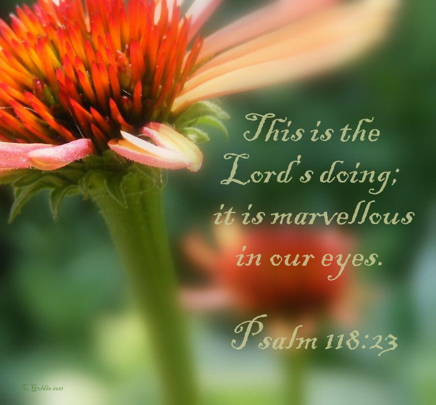Psalm 118:23