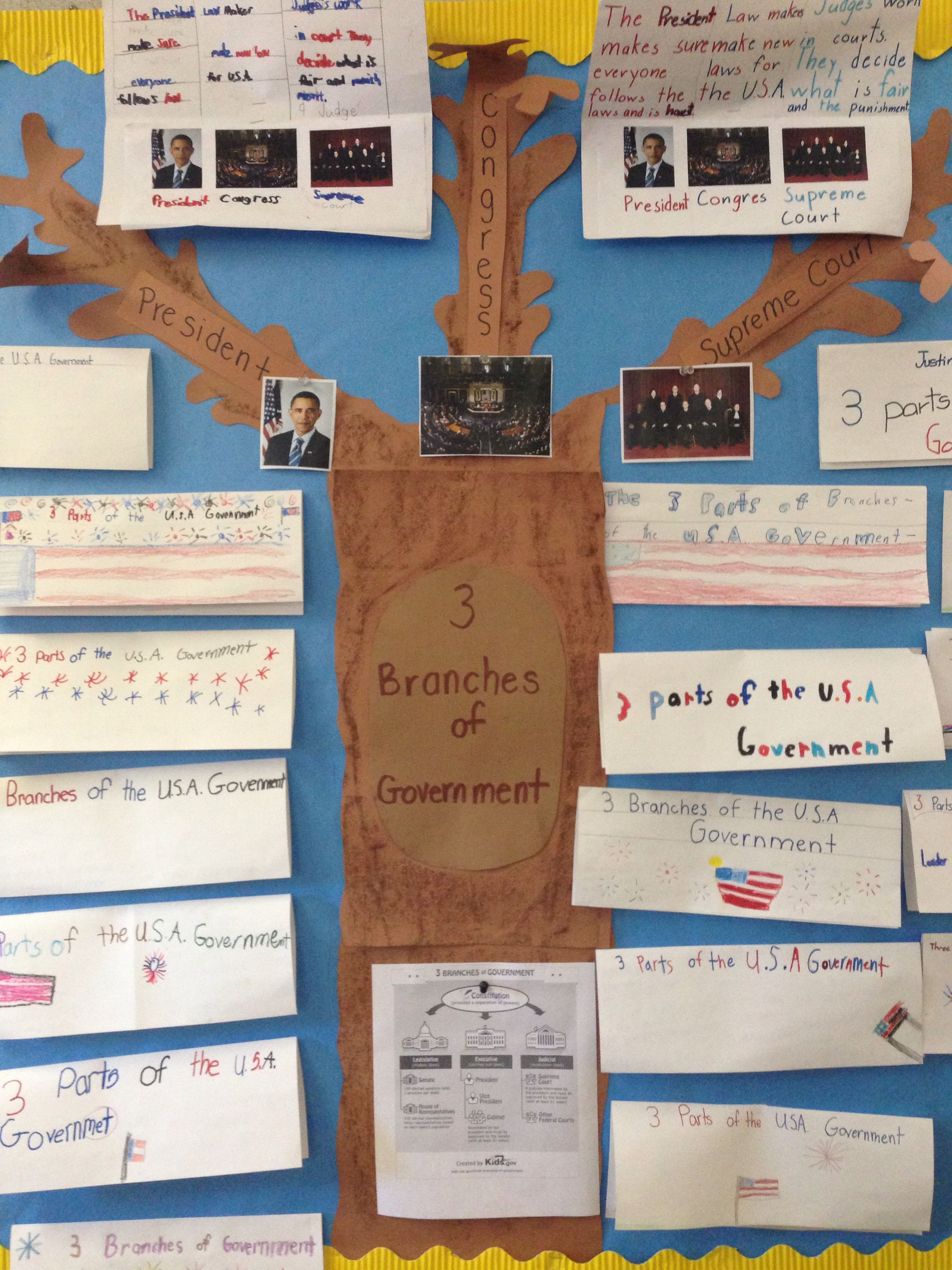 3 Branches Of Government Project