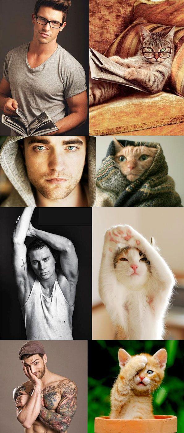0522f2bcdf357a54dd995551c5076f9d 4 Pics of Cats Mimicking Men.. Thats getting more and more funny :D models mimick men lol fun cats cat
