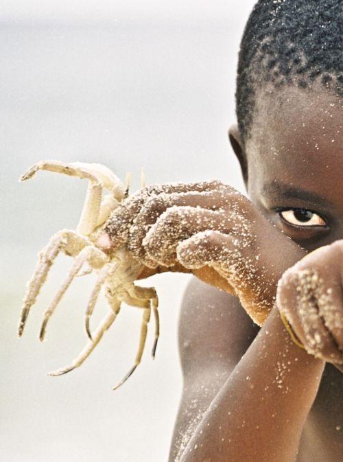 Ragazzo che gioca con un granchio in Nigeria (posizione esatta non dato) Foto di Alejandra Ramirez Martin del Campo