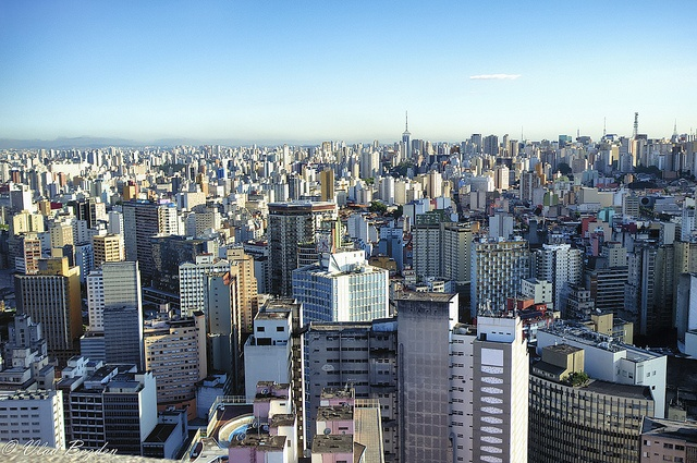 Sao Paulo - just a business city? Get on top of the Banespa and be amazed by the sea of buildings before you. Yes, it's a business city, but there's still plenty of other things to do. Visit the MASP to see its notable collection of European art. Walk around Ibirapuera  Park to see some Oscar Niemeyer architecture. Not into that sophisticated stuff? Shop at the Municipal Market for all sorts of goodies - it's a nice alternative to Stop & Shop.