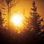 Dieci fotografie convincenti: Perché si dovrebbe aggiungere Visitando Alberta, Canada a vostra Bucket List