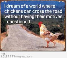 Why did the chicken cross the road?!