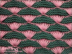Shells on Garter-stitch Background