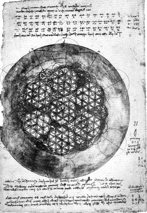 Leonardo da Vinci's notes of the hexagon