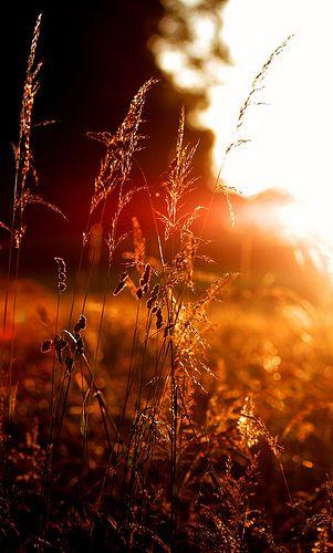 Selbst der Sonnenuntergang sieht noch zu Heiss aus - Anche il tramonto sembra essere troppo caldo