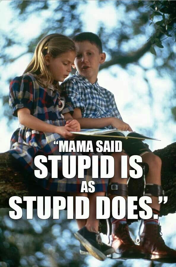 Image result for forest gump stupid is as stupid does