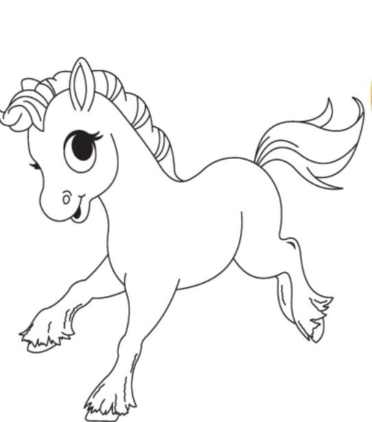 free baby horse coloring pages cooloring com