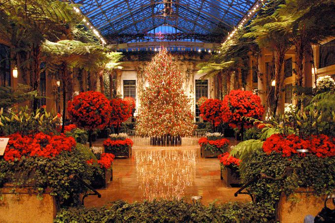 Longwood Gardens christmas - Kennett Square, Chester County, Pennsylvania