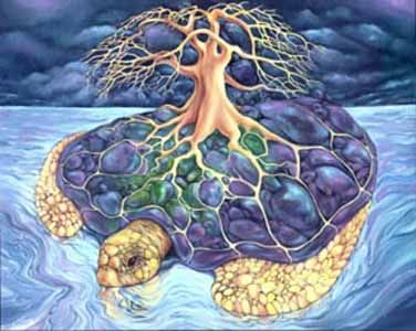 Native American Myths Legends Turtle | Native Americans | The turtle carries the world tree.