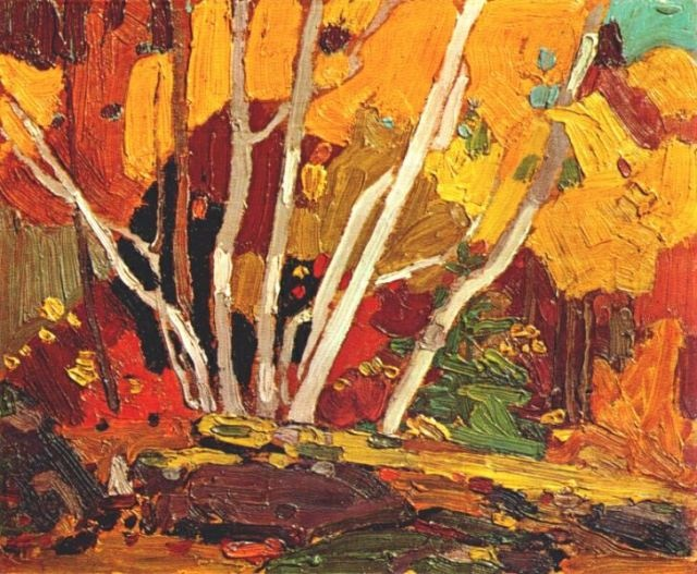 autumn birches, Tom Thomson