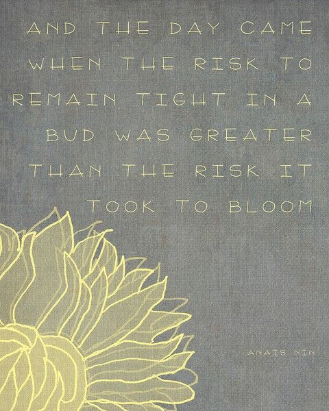 And the day came when the risk to remain tight in a bud was greater than the risk it took to bloom - Anais Nin