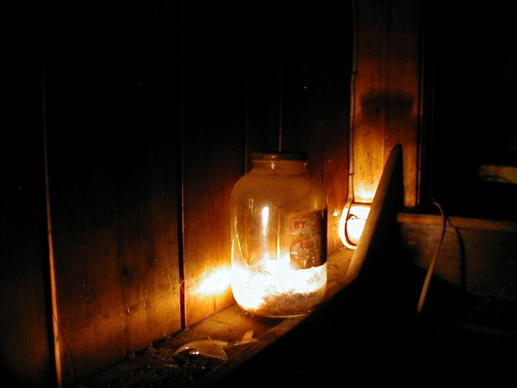 flashlight shining in a cabinet - Google Search