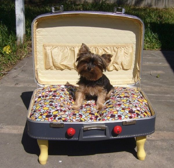 DIY Suitcase Pet Bed  http://www.goodshomedesign.com/diy-suitcase-pet-bed/#more-14178