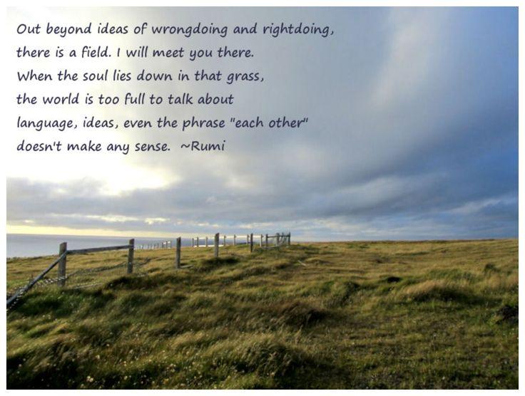 Meet Me In The Field Rumi Quotes Quotesgram