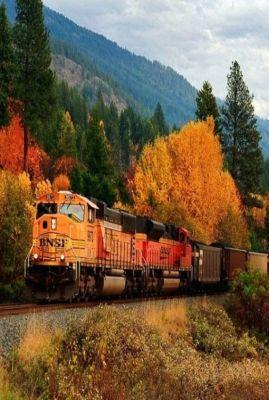todomundopeques música tren viaje